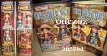 Banpresto One Piece WCF Special Figure Book (Pirate Kings)